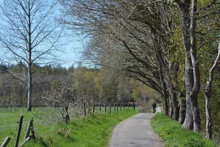 wandelen Oranjewoud Heerenveen