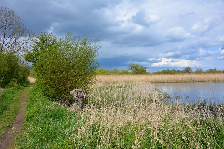 wandelpad langs de Oude Rijn