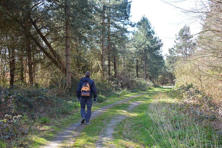 wandelroute Texel Duinen van Texel