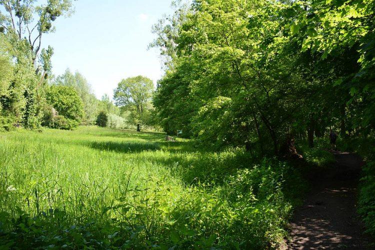 Dal van de Strijthagerbeek in Zuid Limburg