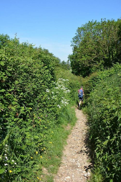 Dutch Mountain Trail etappe 3