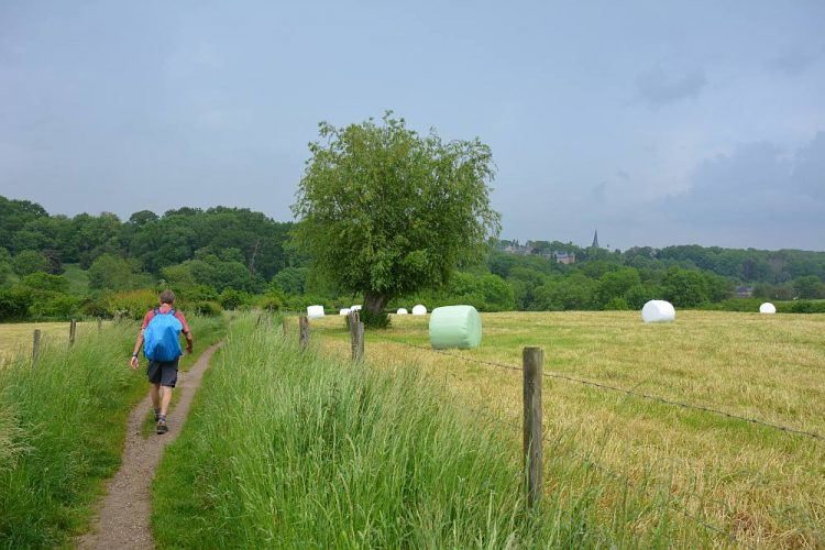 Regenachtige dag op de Dutch Mountain Trail