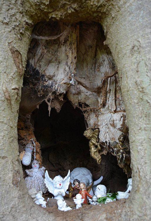 engeltjes in holle boom langs Dutch Mountain Trail