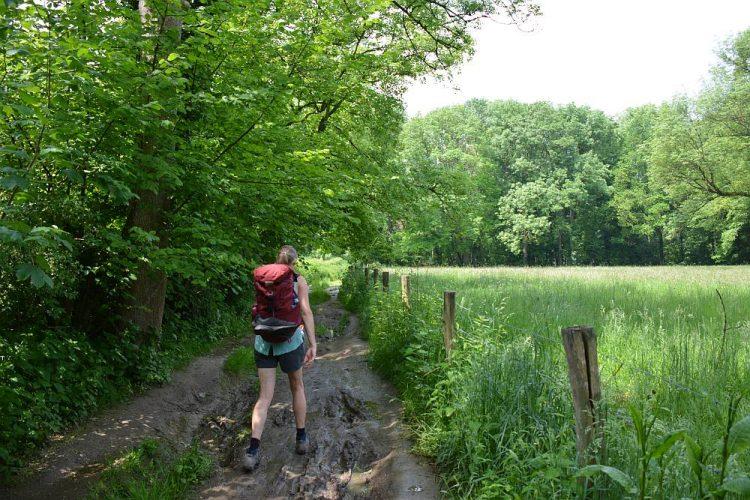 modderig pad op de Dutch Mountain Trail