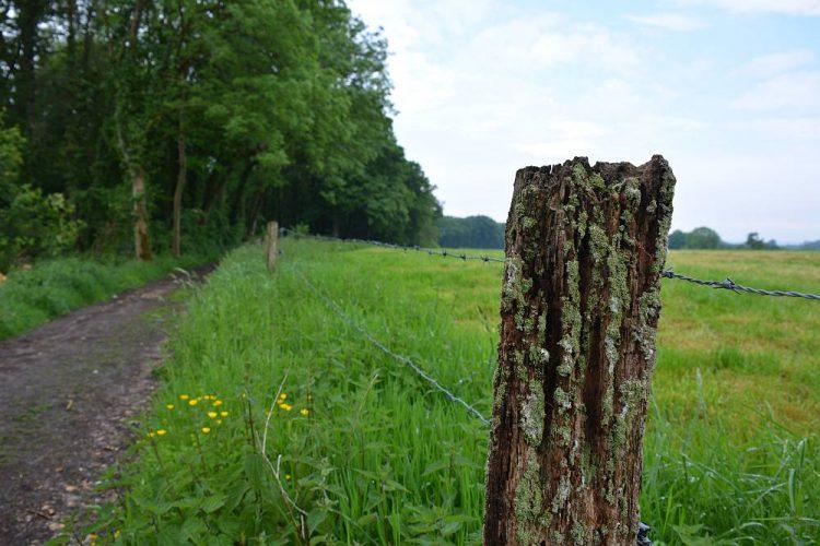 paal met mos langs akkers Belgische Voerstreek
