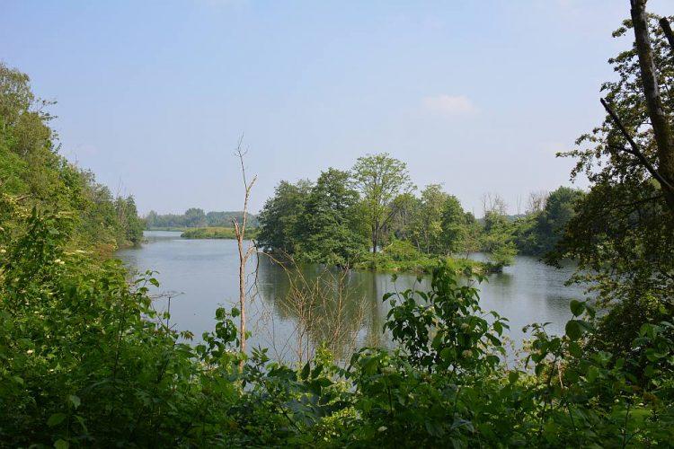rivierenlandschap langs de Maas bij Eijsden