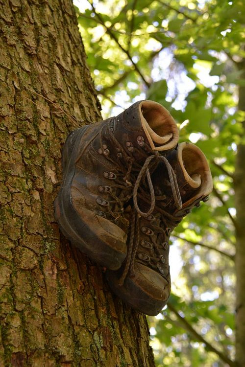 schoenen op boom langs Dutch Mountain Trail