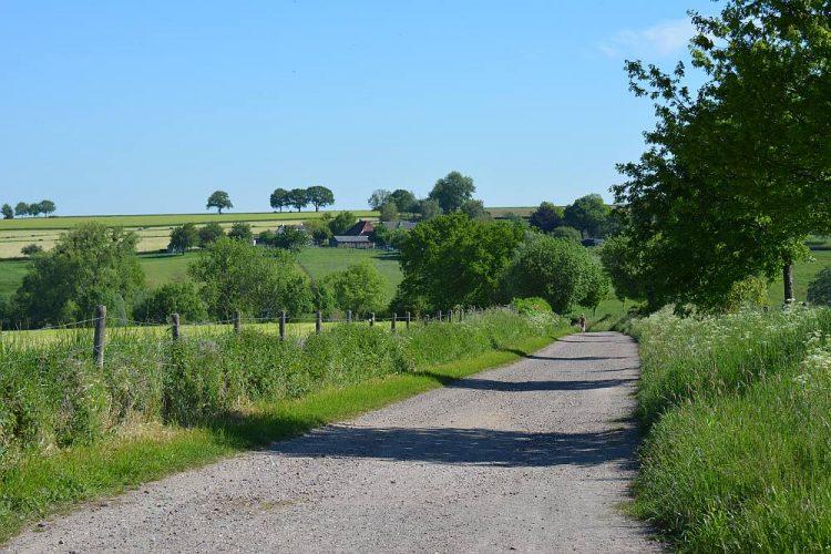 wandelpad in Limburgs heuvellandschap