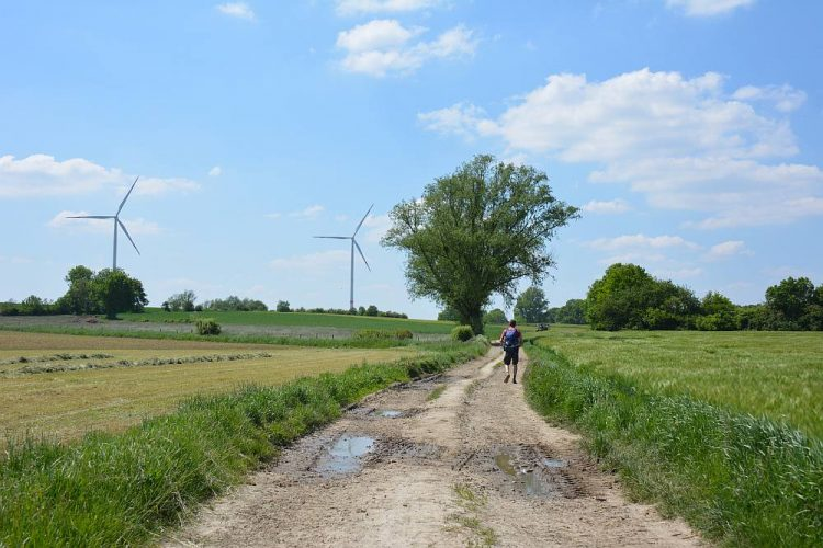 windmolens en akkers in Duitsland