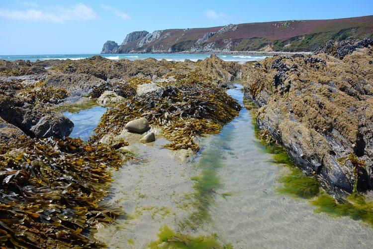 Plage de Veryac'h.Bretagne