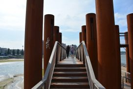 Zicht op Rotterdam vanaf de noordkant van het eiland van Brienenoord