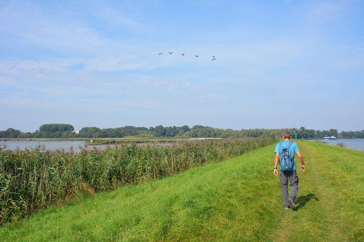 wandelen over grasdijk langs Noord bij Rotterdam